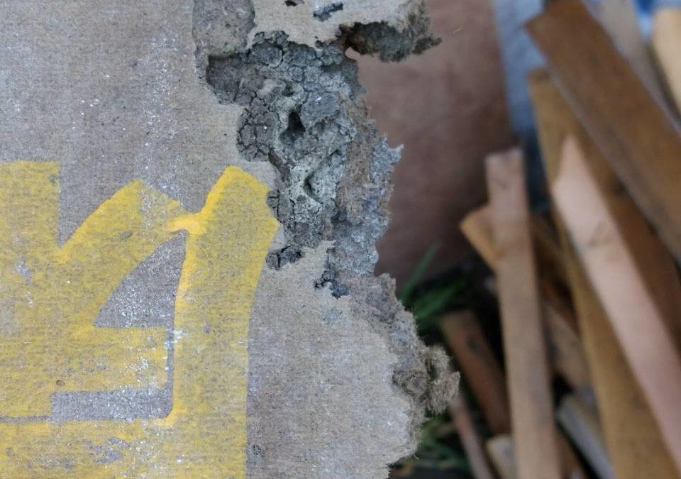 シロアリ被害 修繕工事